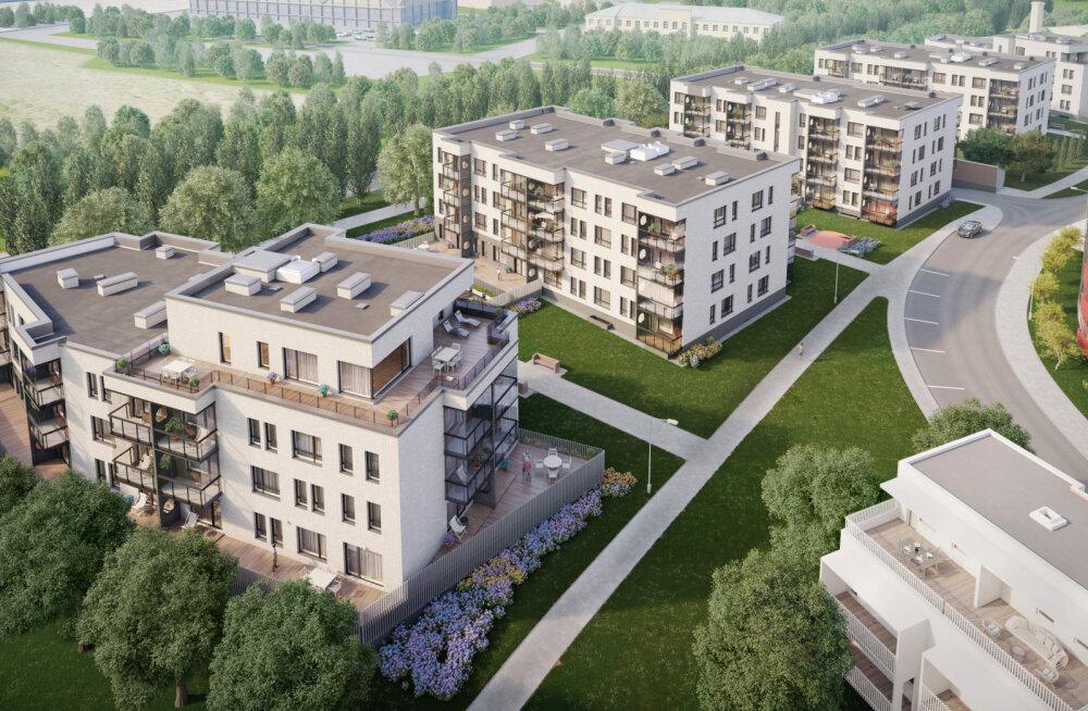 YIT Ehitus alustas Kalamajas Vibu tänaval uute elamute rajamist