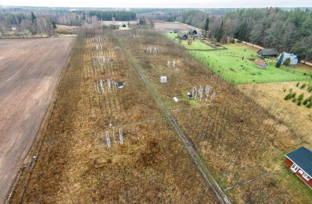 Tartumaal paiknev katseala, kus uuritakse õhuniiskuse mõju metsale. Arne Sellini loeng tugineb suuresti sealse eksperimendi käigus saadud tulemustele.
