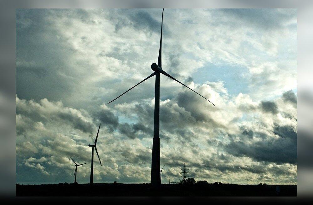 KOLUMN | Ahistamises süüdistatu katsed kaitsta enda reputatsiooni on nagu võitlus tuulegeneraatoritega