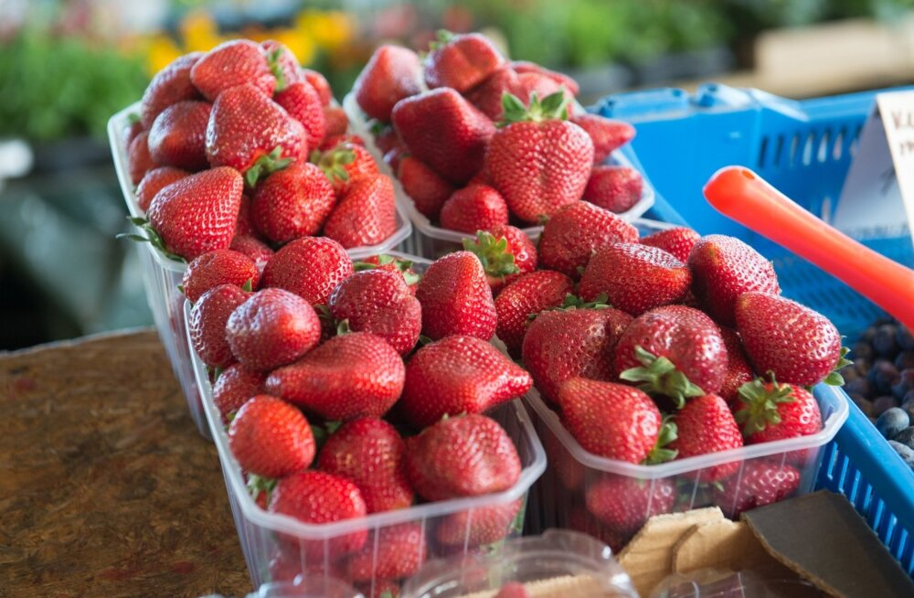 Maasika hinnad turgudel
