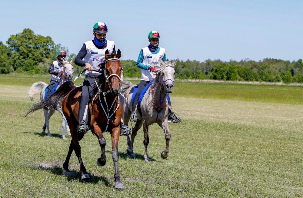 Kestvusratsutamine on hobuste vastupidavus- ja kiirusvõistlus, kus pannakse proovile nii ratsaniku osavus ja oskus hobust valitseda kui ka suksu. Kõige ees Dubai šeik Hamdan bin Mohammed bin Rashid Al Maktoum hobusel Upedro
