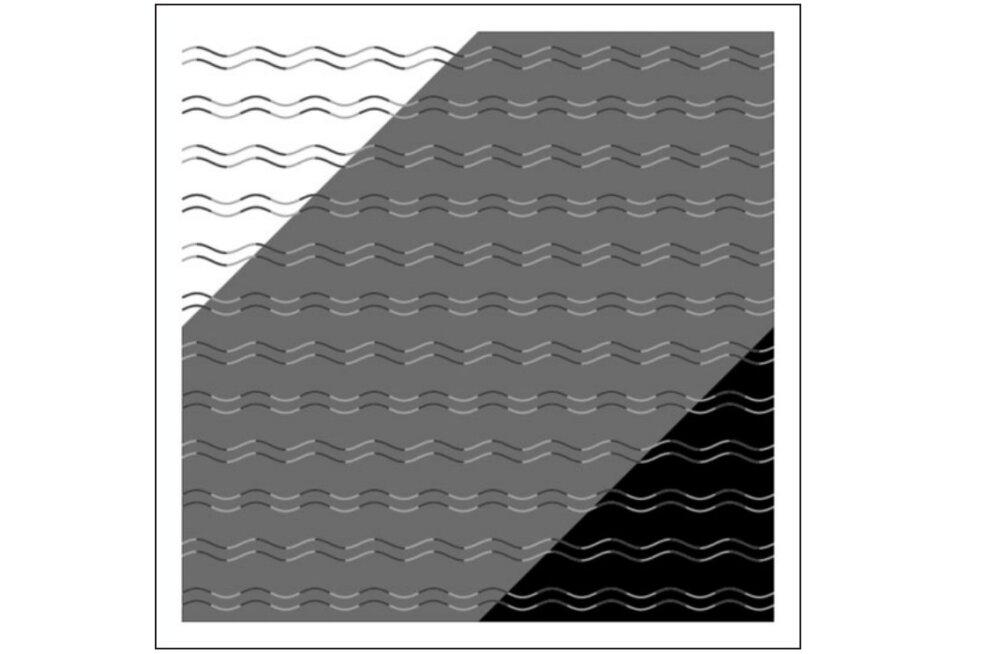 Kumeruspimedus: kõik jooned sel pildil on tegelikult algusest lõpuni lainelised