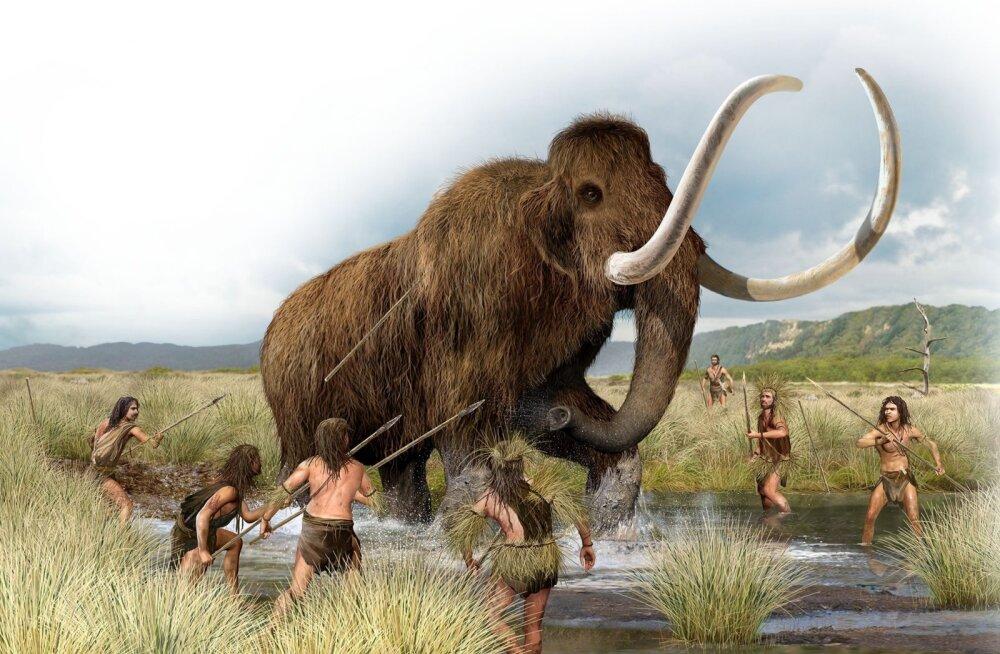 Paljud pikad Euroopa mehed põlvnevad iidsetest mammutiküttidest