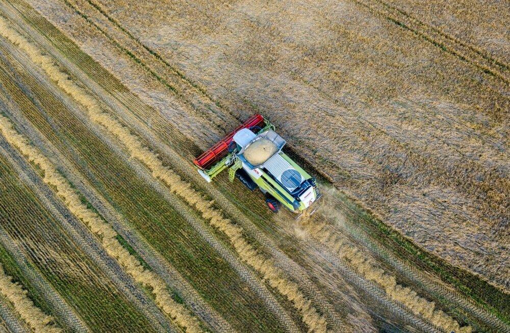 Põllumajanduskoda selgitab uuringuga välja põuakahjude ulatuse