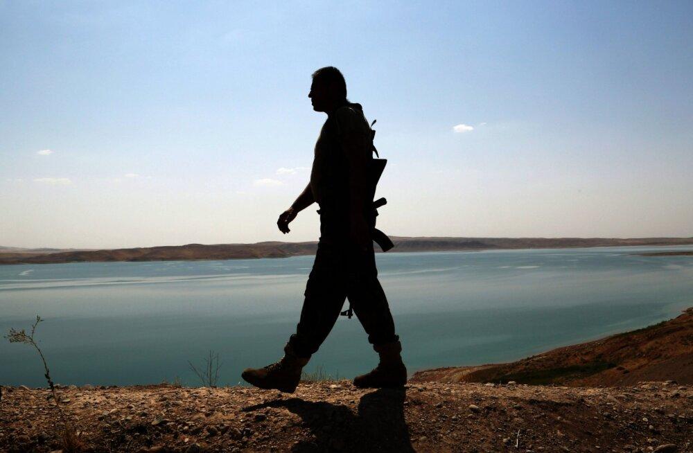 Maailma ohtlikem tamm on kokku varisemas: poolteist miljonit inimelu ohus
