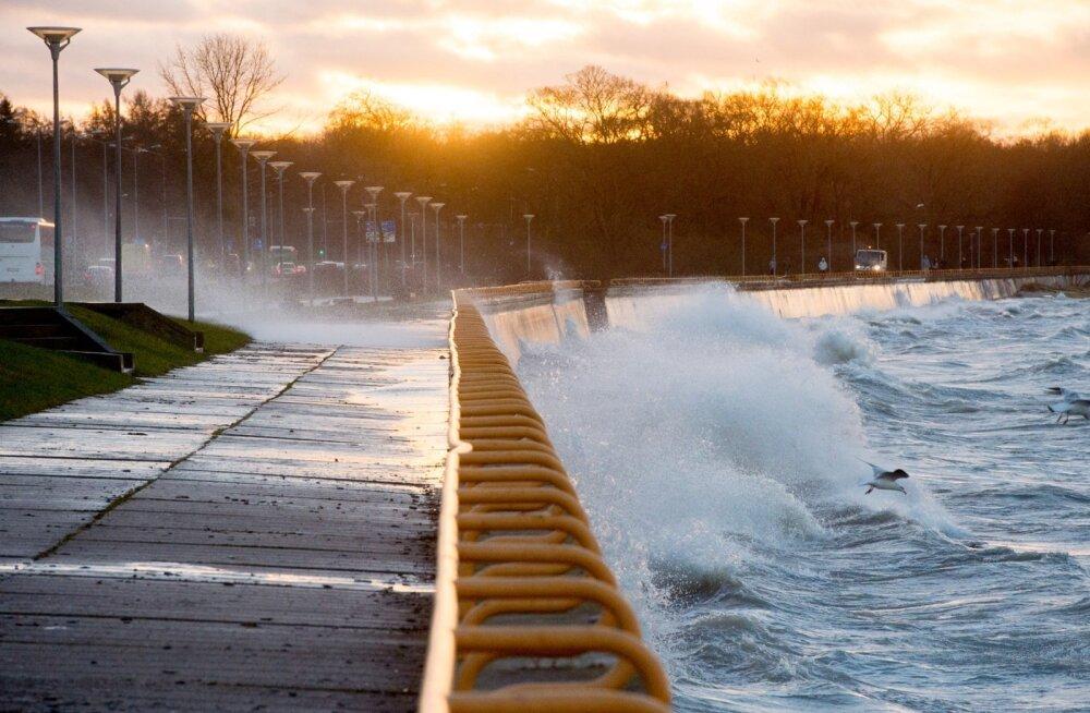 Eestile läheneb tormine ilm! Tuul tõuseb 25 meetrini sekundis ja sajab lörtsi
