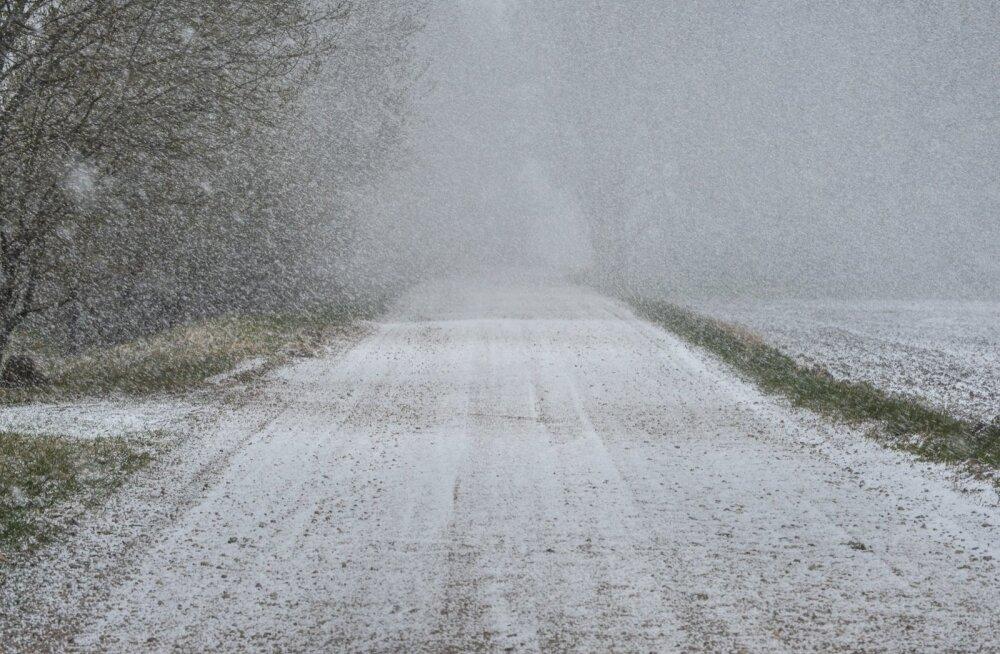 Põhja-Viljandimaal tuli lumi maha