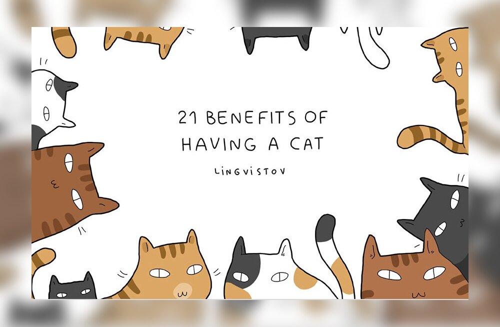 GALERII: 21 humoorikat illustratsiooni, kuidas kass meie elu värvikamaks muudab