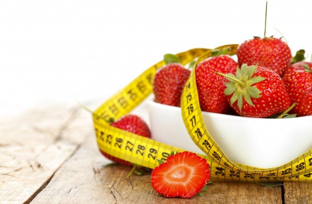 Почему низкокалорийные диеты не работают (объясняет нейробиолог)