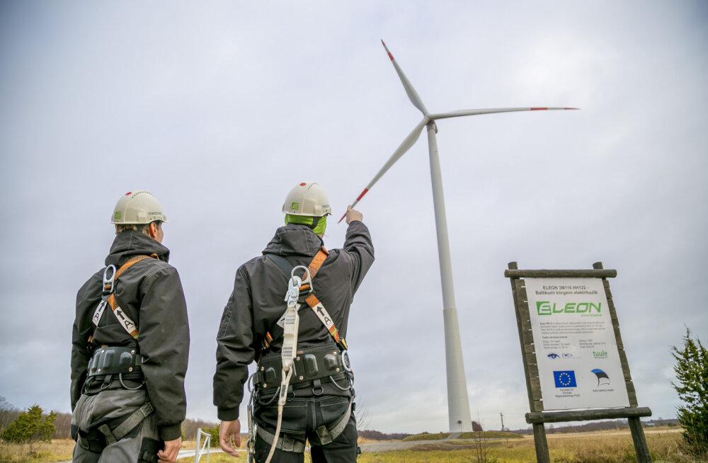 MEIE MAA | Sõnajalgade tuulik püstitas Eesti tuuleenergia rekordi
