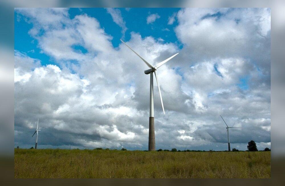 Teadlase sõnul reostab tuuleenergia loodust