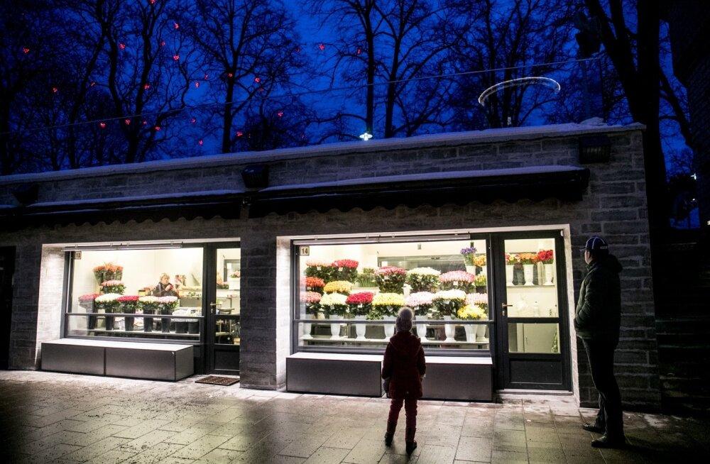 Uued lilleputkad Viru tänaval
