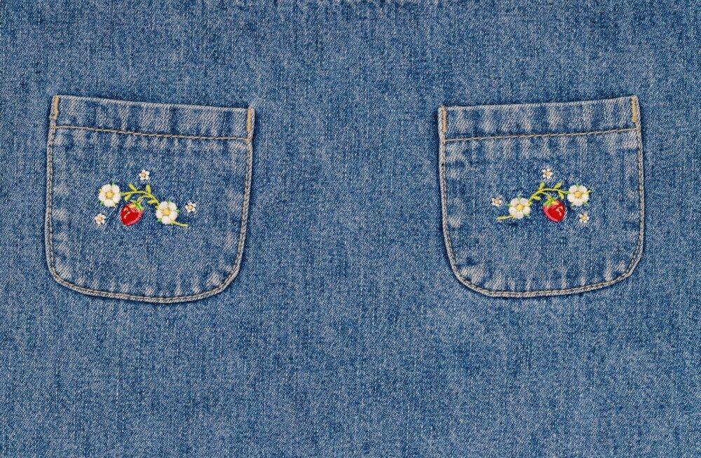 Kel piisab ühest, õmbleb ühe tasku; kel vaja rohkem, teeb neid kaks.
