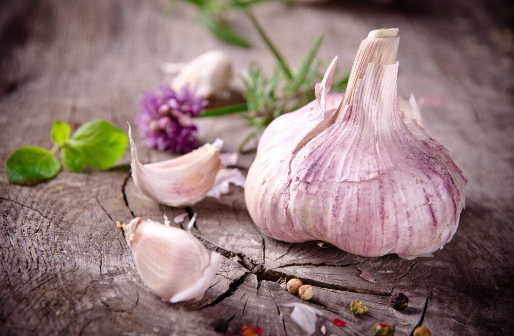 VÄGEV TERVISETURGUTAJA: 7 põhjust, miks süüa küüslauku