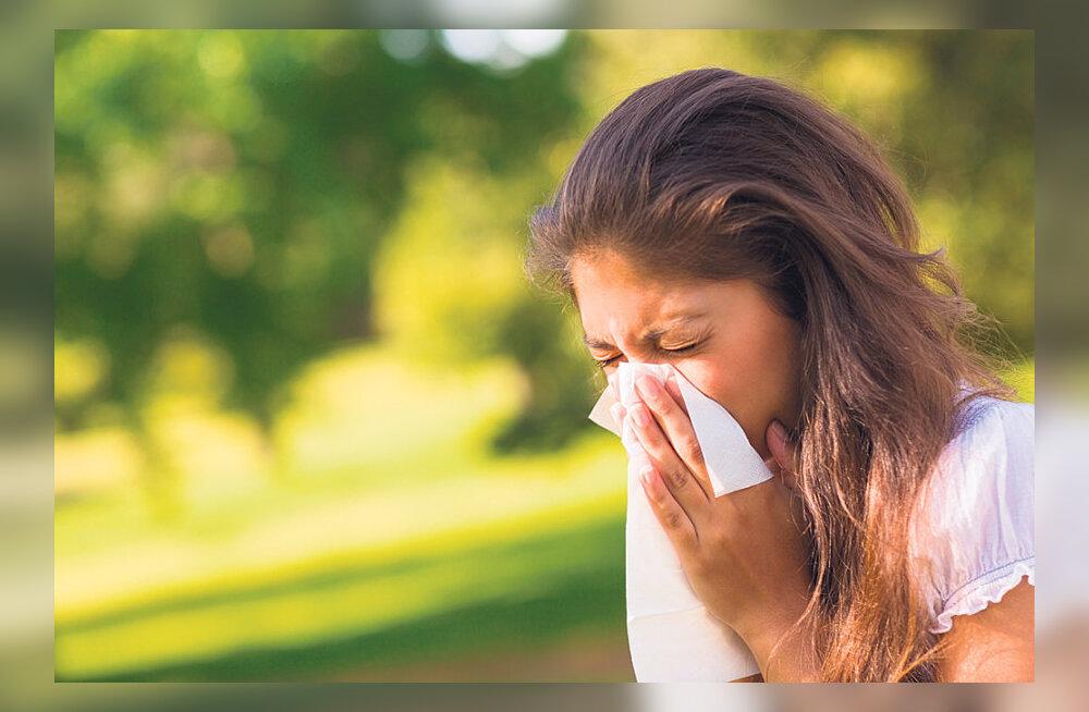 Kas käes on allergiasajand?