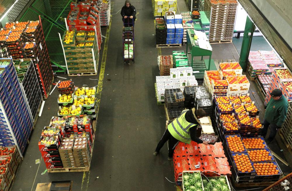 Euroliidu majapidamised viskavad aastas ära üle 17 miljardi kilo puu- ja köögivilju