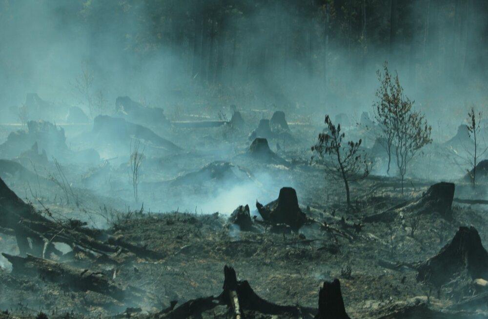 EL-il pole Läti metsapõlengu kustutamiseks enam vabu helikoptereid, appi tuleb Valgevene