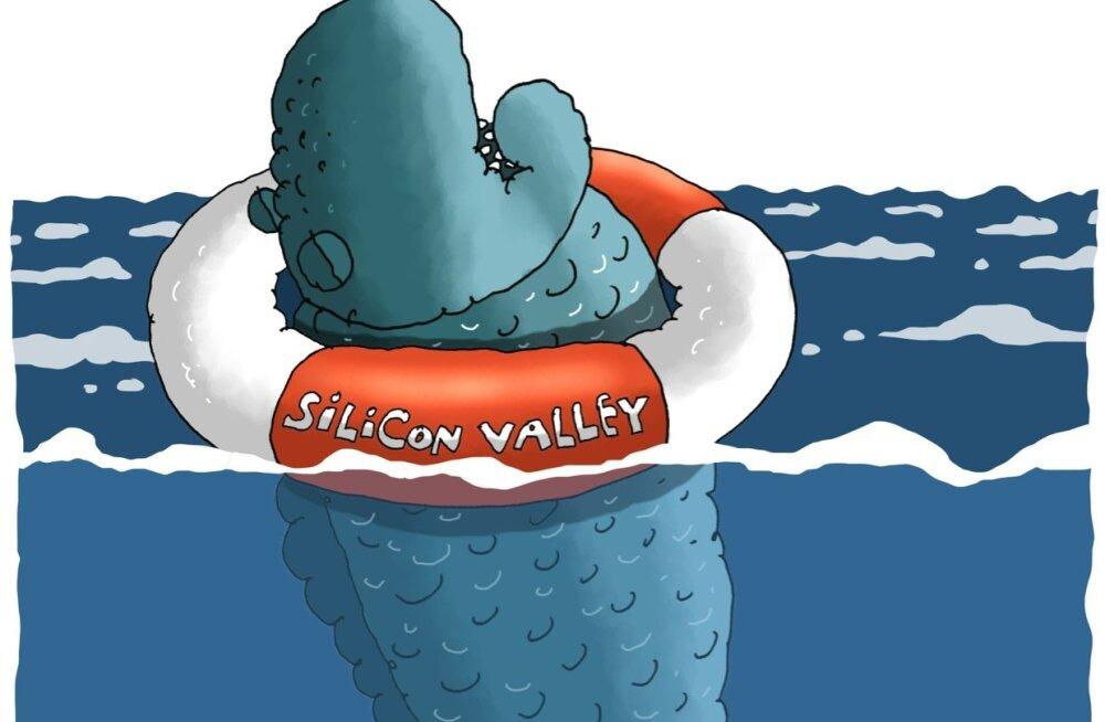 KARIKATUUR   Silicon Valley on uppumisohus