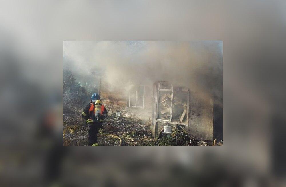 ФОТО: В Ляэнемаа при пожаре погибла женщина