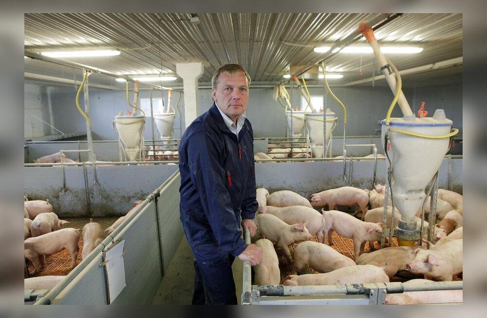Aasta Põllumees 2013 kandidaat Kalmer Märtson