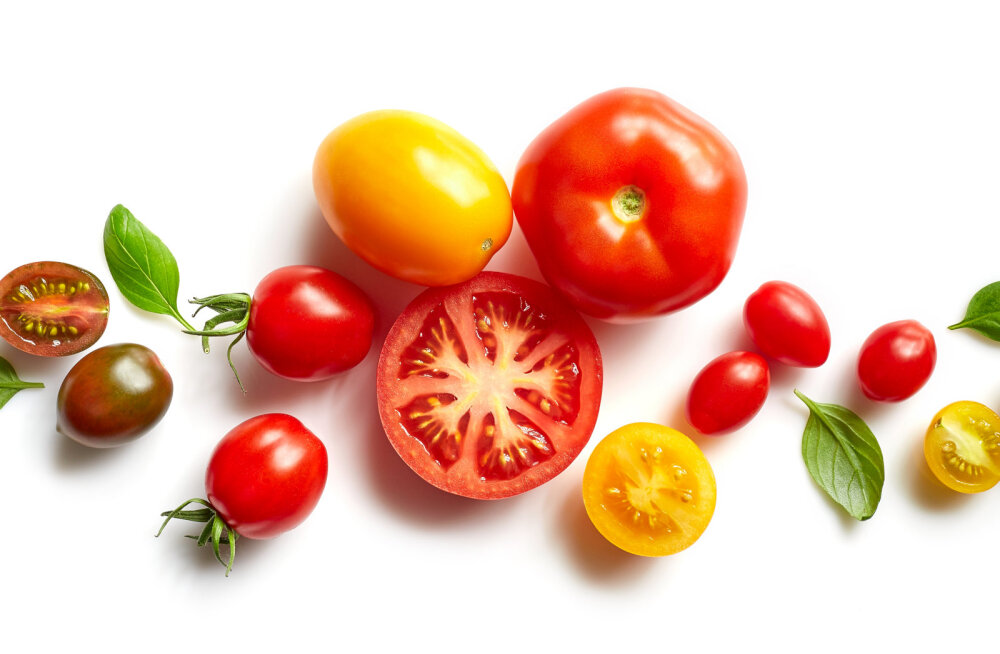 USKUMATU LUGU | Vaata, mida inimesed mullale lisavad, et saada magusamaid tomateid