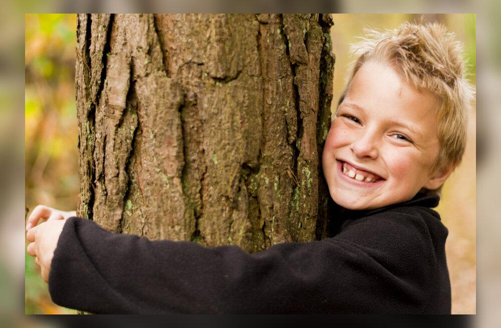Teadlaste hinnangul on puude lähedal elamine kasulik inimese tervisele