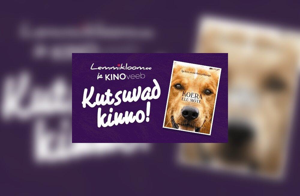 ÜRITUS: Lemmikloom ja Kinoveeb kutsuvad kõiki loomasõpru vaatama aasta meeleolukaimat loomafilmi!