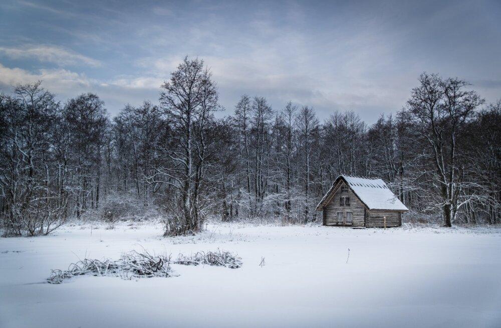 Talvine loodus