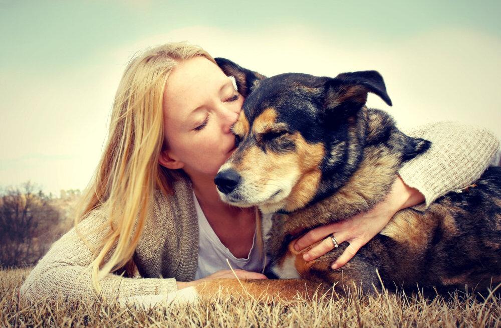 TOP 5: Viis tavalist viga, mida loomaomanikud tegema kipuvad