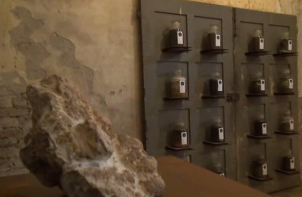 Ei või olla! Itaalias avati sitamuuseum