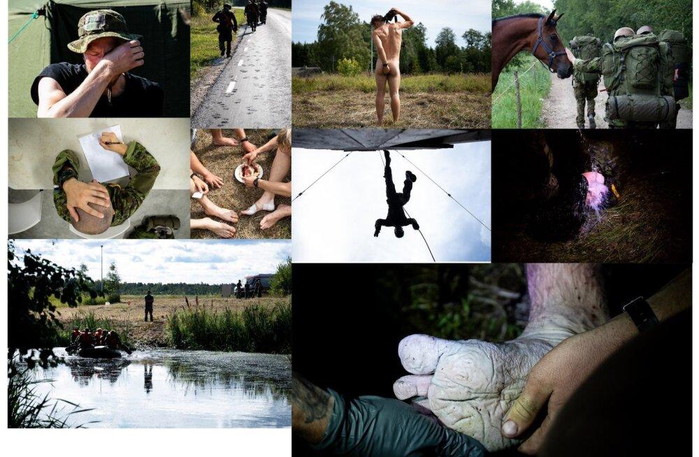 ФОТО: Таранд, Нечаева, Гросс, Кальюлайд и не только... Эти снимки претендуют на звание лучших пресс-фото года