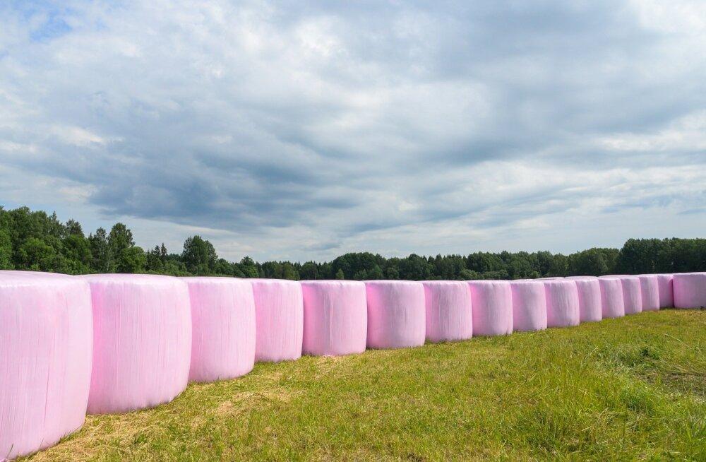 Roosad heinapallid toetavad võitlust rinnavähiga