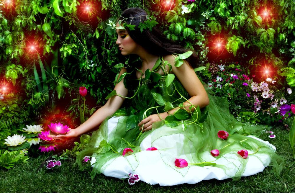 Druiidide lillehoroskoop: vaata, milline lill oled sina!