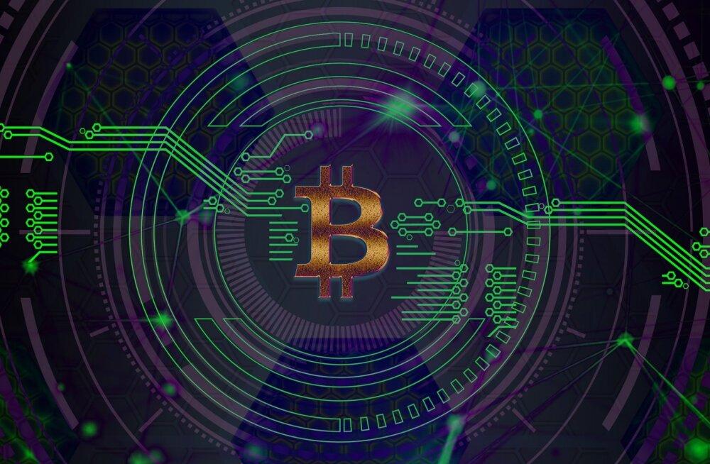 Kes on bitcoini looja?