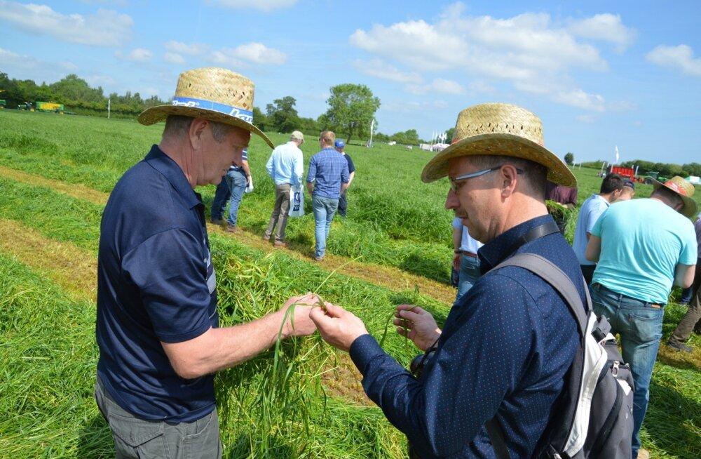 Eesti põllumehed käisid Inglismaal rohumaanäitusel.