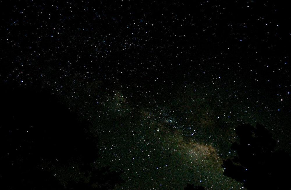 Не проспите звездопад! Лучшие приложения для наблюдения за небом