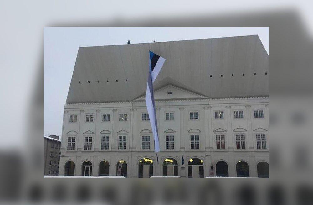 ФОТО: Нарва готовится к юбилею Эстонии: колледж ТУ украсили огромным флагом