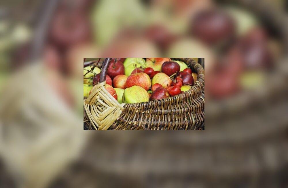 õun, kartul, korv