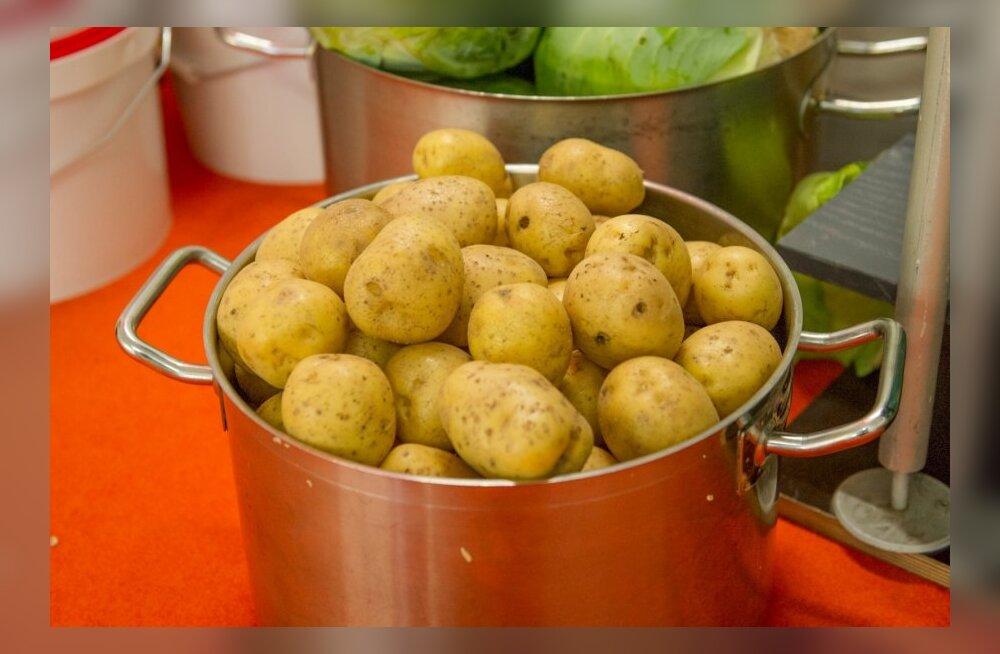 Картофель: чем вреден продукт, который вы едите каждый день