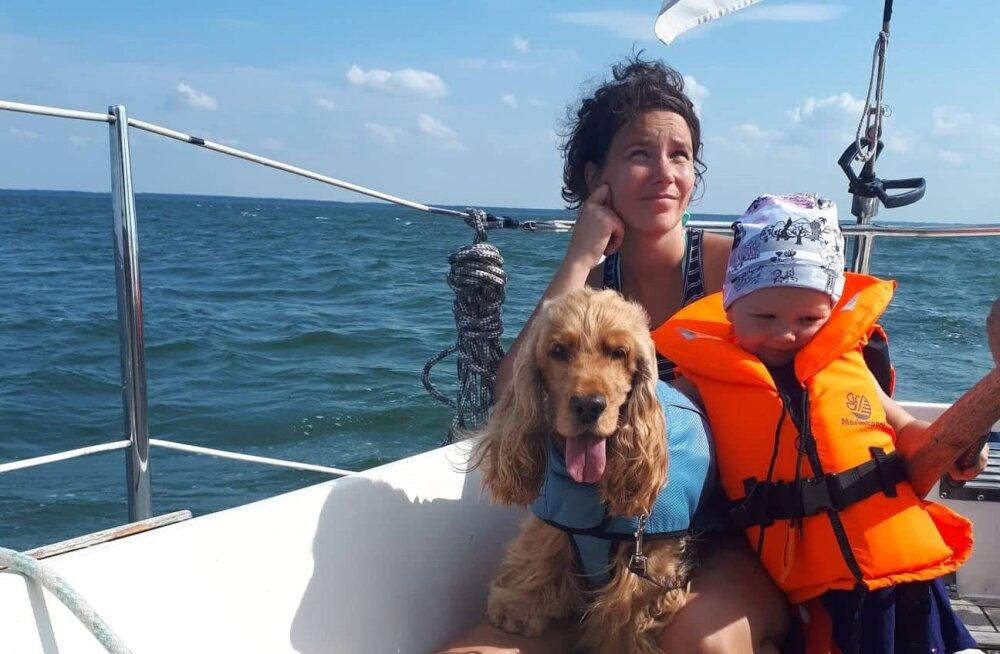 Palaval suvel kampsun seljas: jahutusvest on sinu koera asendamatu abiline