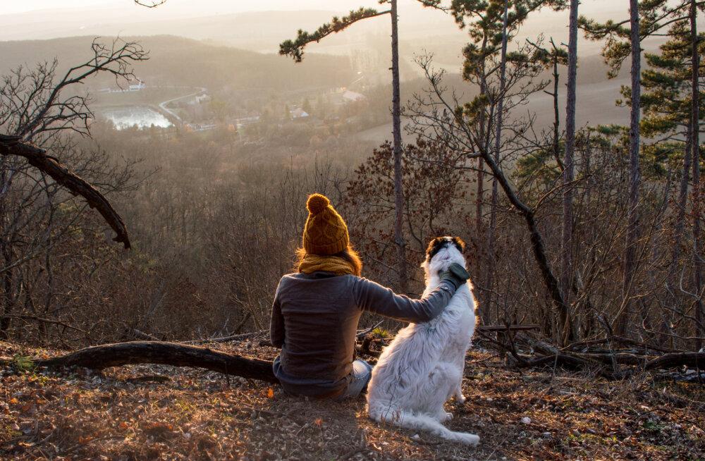Oma koera surm võib inimesele mõjuda palju suurema kaotusena kui lähedase oma