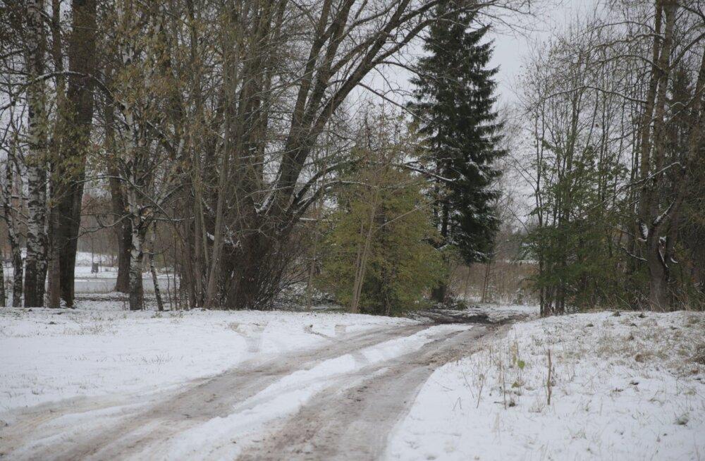 FOTOD ÕNNETUSE PIIRKONNAST | 20-aastane Tartu noormees leiti Raadi tühermaalt