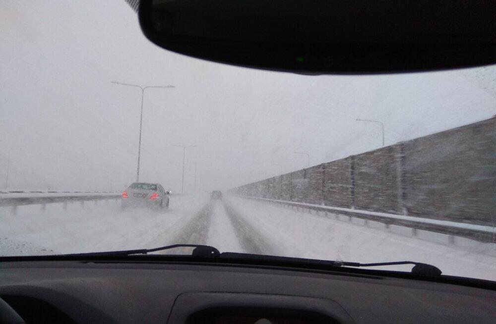 Põhjarannikul võib täna tulla tihedamat lumesadu, homme tugevnevad miinuskraadid ja tuuled