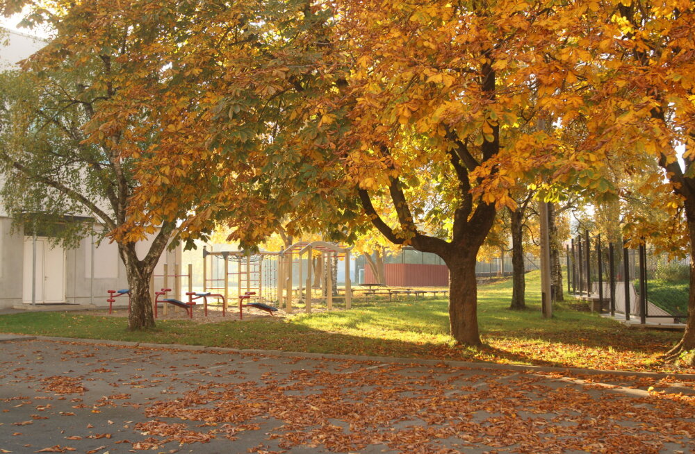 Погода в октябре приятно удивляет: синоптик называет причину