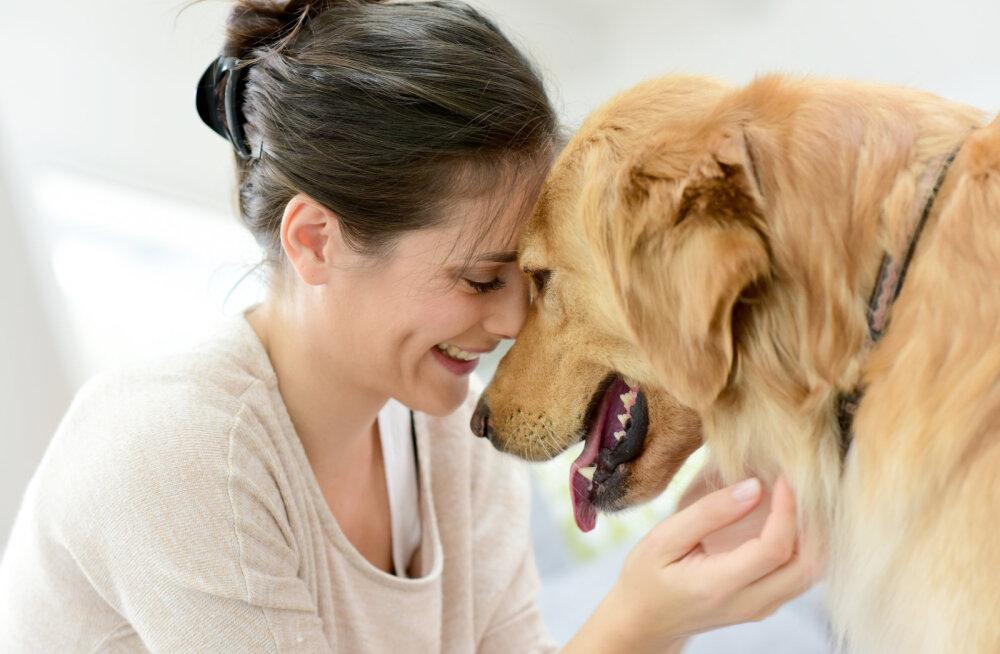 Hüvasti, tervisehädad! Koerad saavad sinu tervisele kasulikud olla lausa mitmel erineval moel