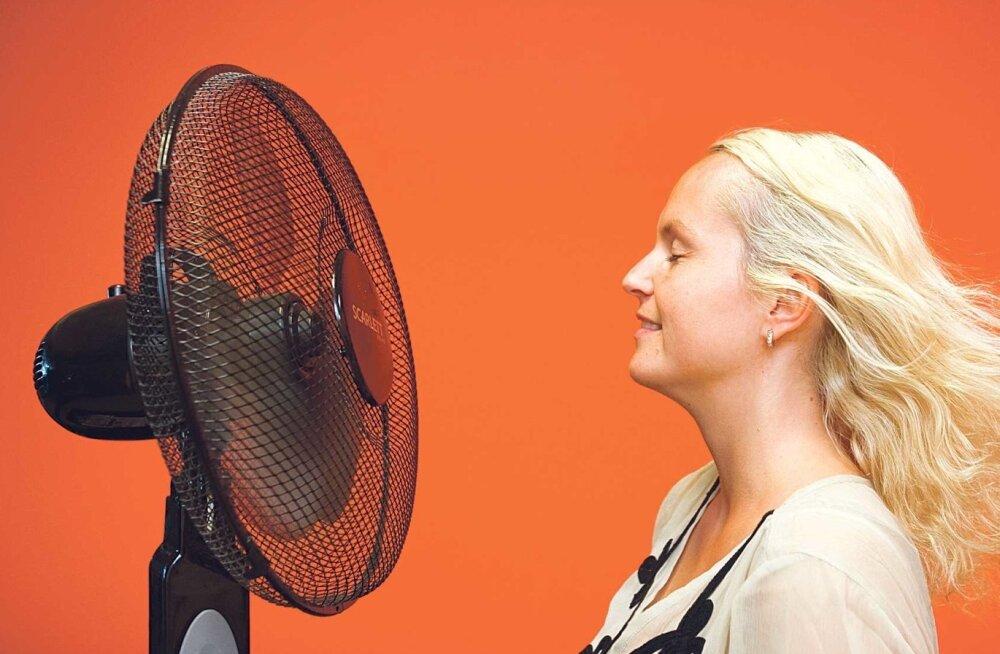 Paljudest kauplustest on ventilaatorid otsas: hinna asemel vaadatakse seda, et propeller oleks küljes ja õhku ringi ajaks