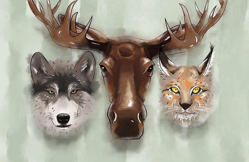 Seakatk ja kärntõbi möllavad metsas endiselt, kuid loomi on järjest rohkem