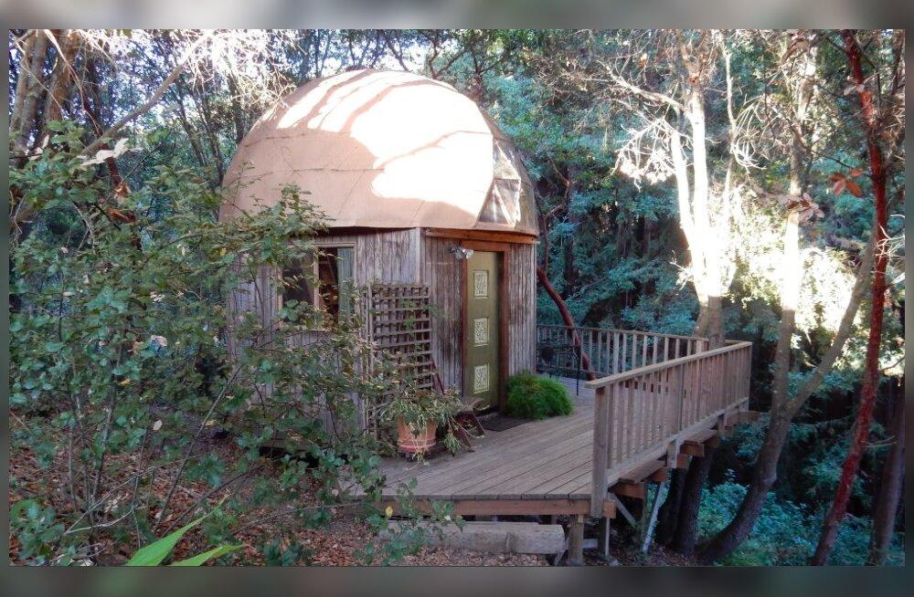 AirBnB kõige populaarsem rendipind - majake California metsas