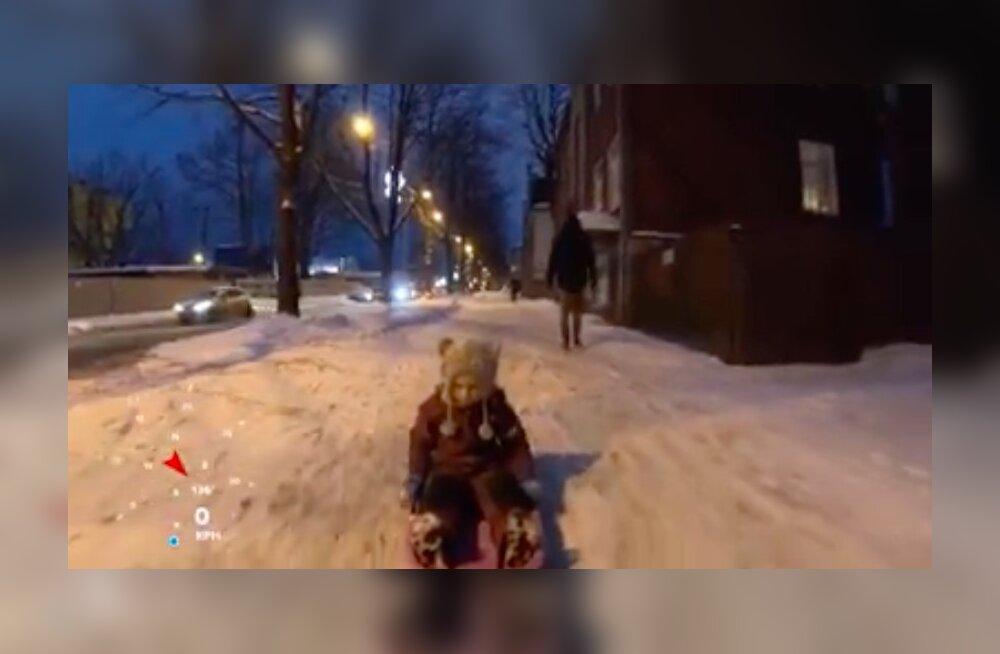 VIDEO   Isa vedas last kelguga ratta taga, pealtnägijad kaebasid politseile ära. Aga kas olukord oli ikka nii ohtlik?