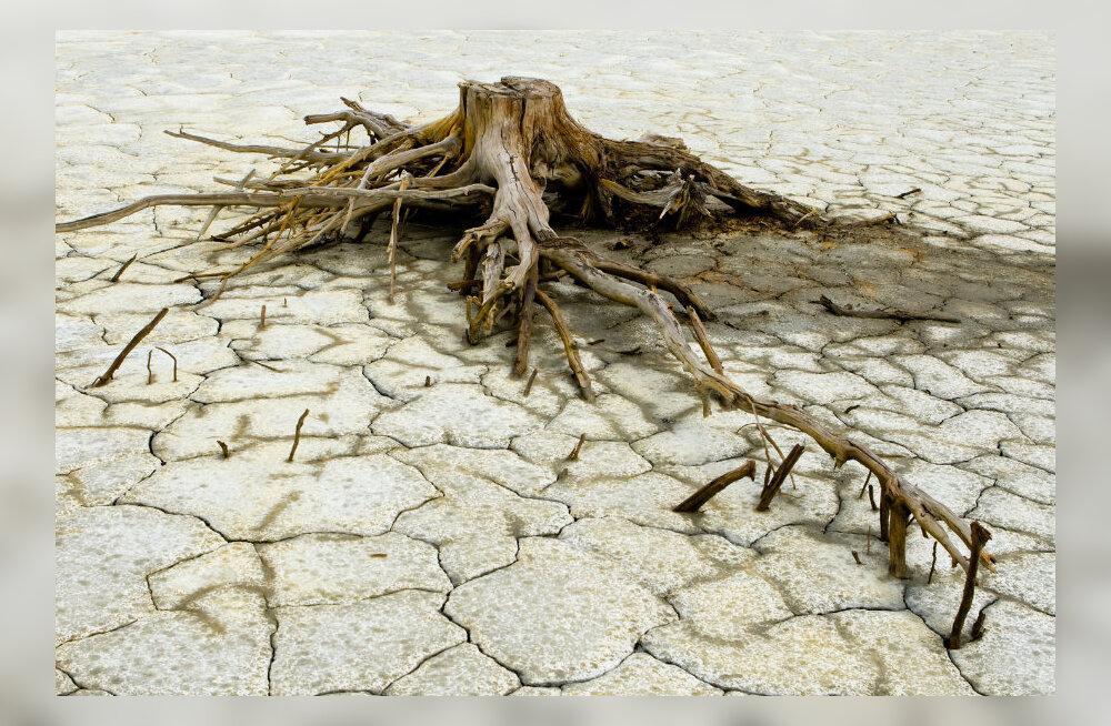 PÕUD: Maailma suuruselt kaheteistkümnendal megalinnal on vesi otsa saamas